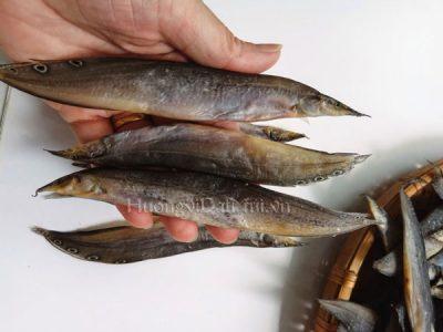 Cá chạch đồng – vị thuốc quý bồi bổ sức khỏe