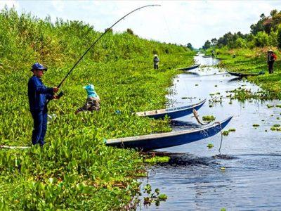 Câu cá Rừng U Minh hạ Cà Mau